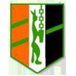 Logo HIC D1